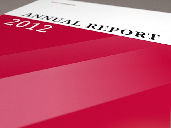 Annual Report Template Indesign Indesign Annual Report