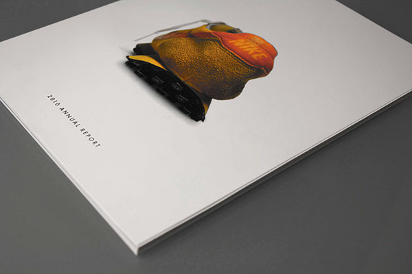 Annual Report 2010 2010 Nike Annual Report on