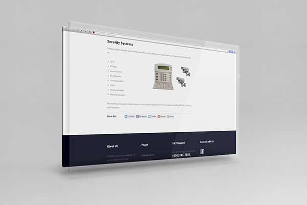 TeleData Systems Website