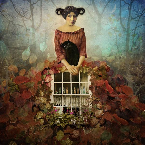surreal story woman Magic   fine colors fantasy Nature Flowers manipulation romantic art painterly Illustrative narrative