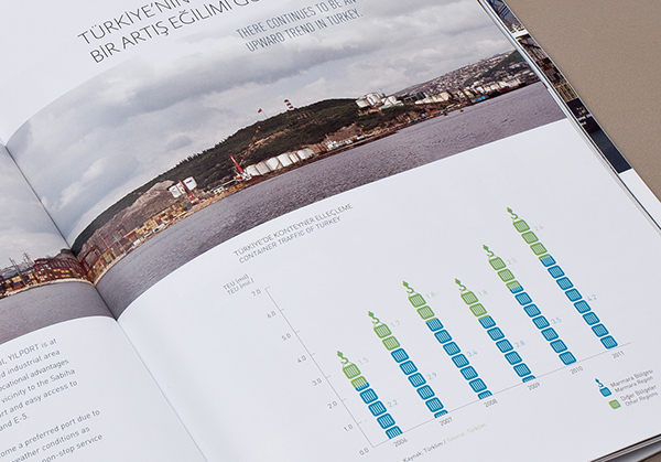 annual report  catalogue infographics