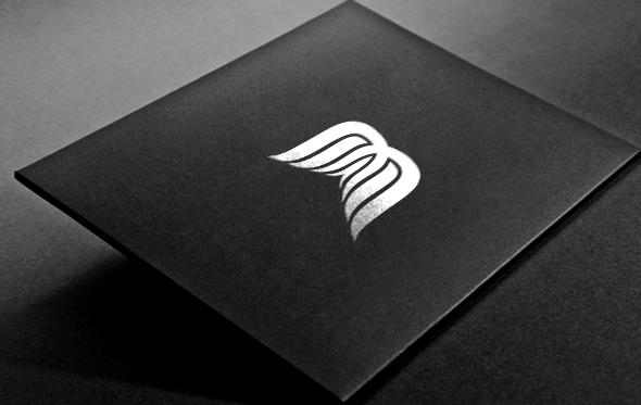 b wing company logo on behance
