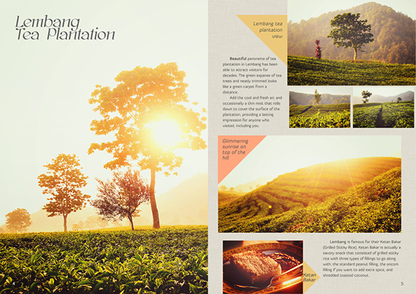 brochure Student work Travel bandung lembang photo retouch