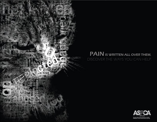 animal abuse series posters on behance