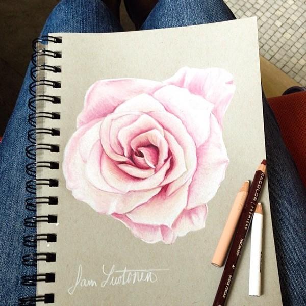 高質感的19張玫瑰花水彩素描欣賞