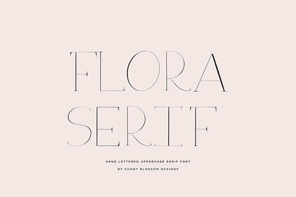 Free Serif Font