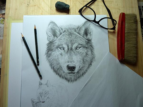 細緻的26張鉛筆素描作品欣賞