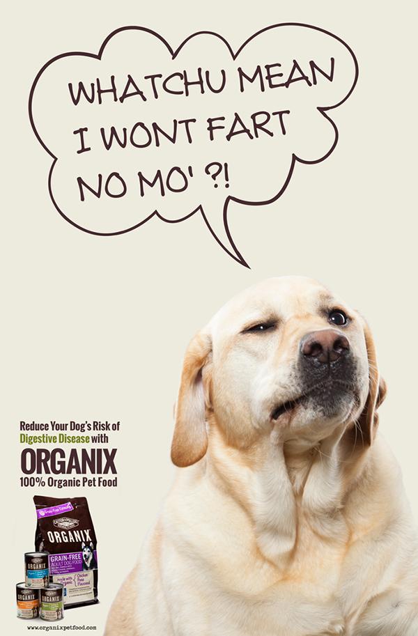 dog food ads