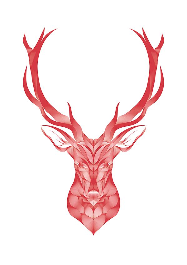 Deer by Borja Fernández