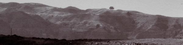 panoramica panorama Gáldar Landscape