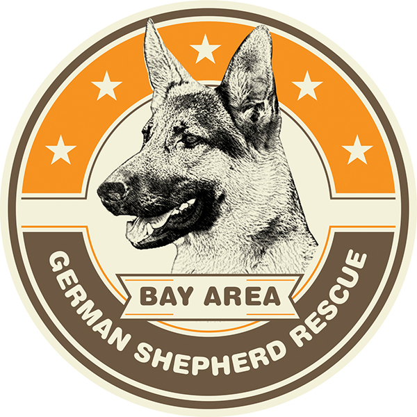 bay area german shepherd bay area german shepherd rescue on behance 3957