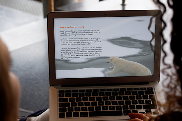 ebook Gyldendal iPad