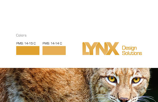 Lynx design solutions on aiga member gallery - Lynx architecture ...