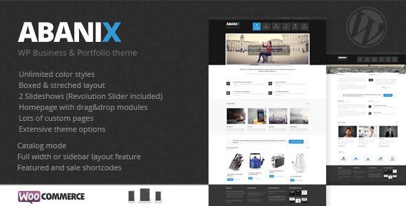 Abanix Business, Portfolio & Shop