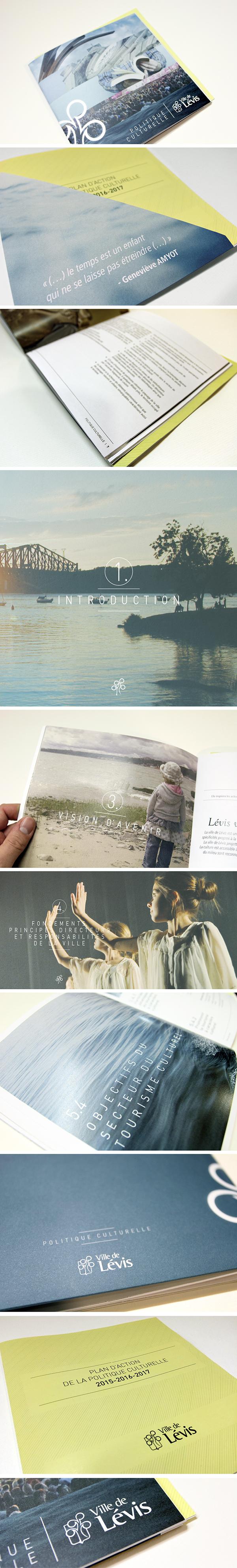 brochure document levis
