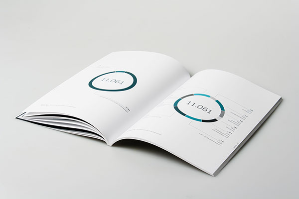 annual report,infographics,information design,data visualization