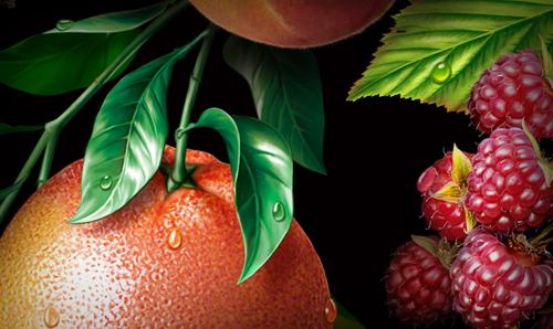 Fruit ILLUSTRATION  orange grapefruit Pear black currant peach raspberry lemon apple
