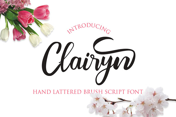 Clairyn Hand Lettered Brush Script Font - Dezign Ark (Beta)