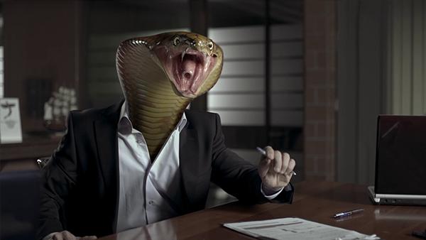 animal shark snake