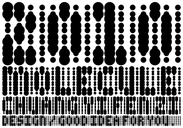 graphy Name card print brand