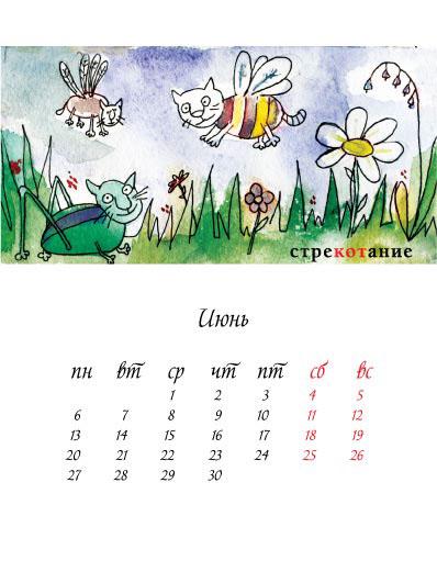 Cat calendar kitten