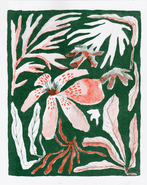 Riso print risograph gouache Montreal painting   ILLUSTRATION  plants Flowers green