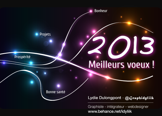 2013 wishes  voeux