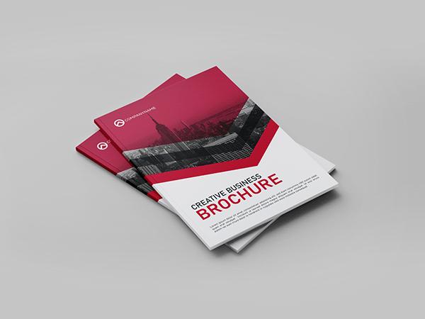 Business Brochure Design   8 Page Bi-fold Brochure