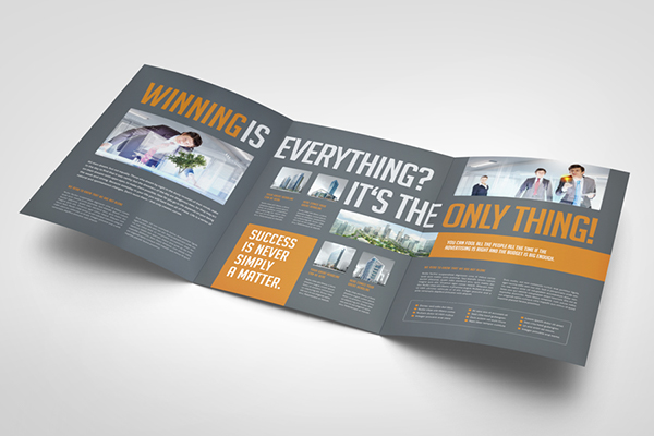 business image trifold brochure on behance