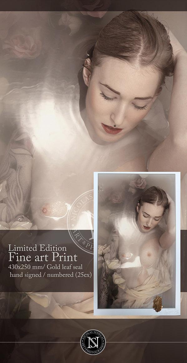 limited edition  Fine-Art Print Gold leaf seal  Limited 25