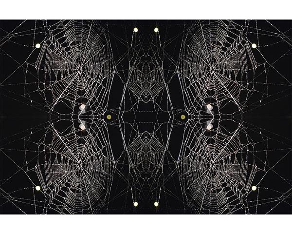Spider web's Kaleidoscope (Tomas Saraceno)