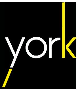 magazine york editorial Cat b&w byn wood kitten trend black yellow geometric animal book mag