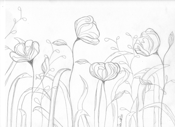 Spring Flowers Sketches 09