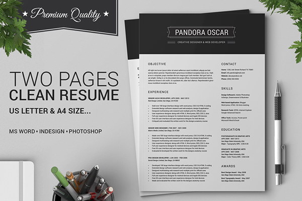2 pages clean resume cv pandora on behance