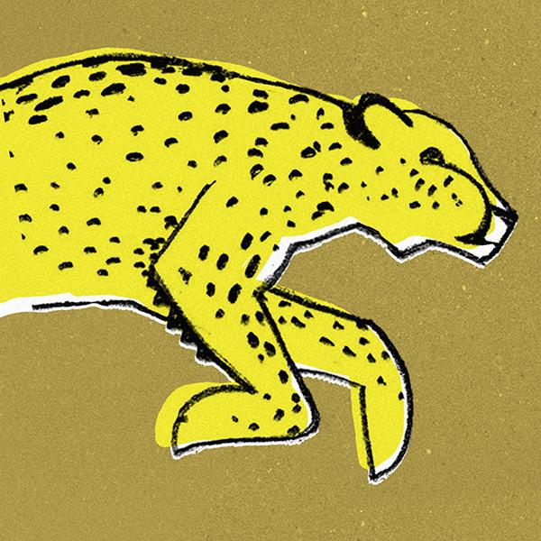 Chester Cheetah Illustrations On Behance: Illustrations 3 On Behance