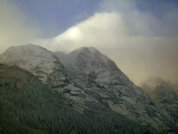 winter snow alps forest mountains Christmas
