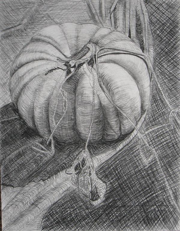 Contour Line Drawing Pumpkin : Pumpkin cross contour on behance