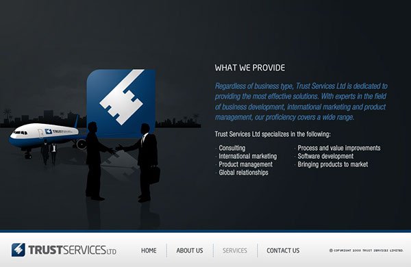 Trust Services LTD. flash animation Flash Development
