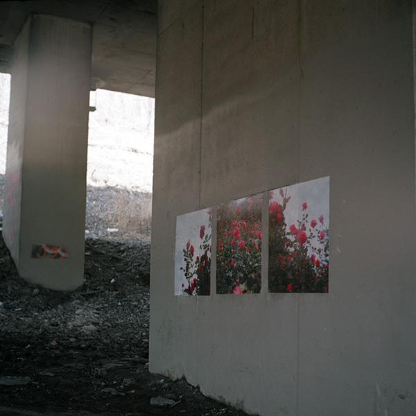 public art contemporary photography