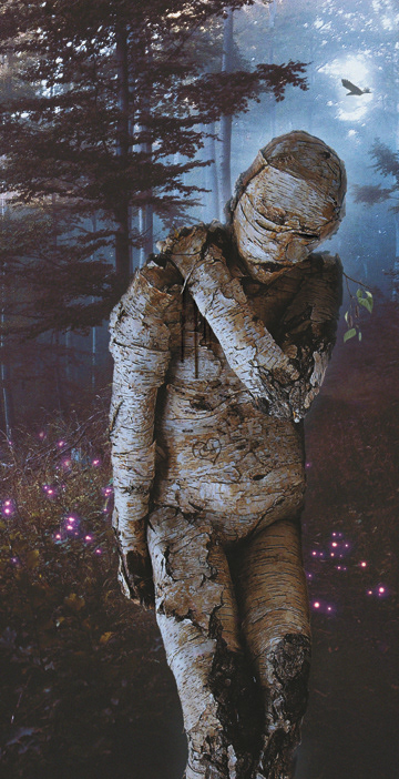 figure forest horror Tree  wood wounded