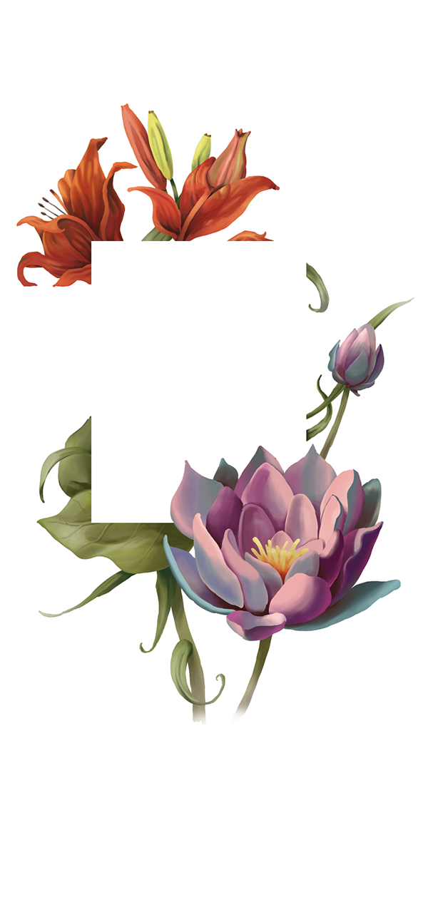 lotos,Lotus,Flowers,Bahai,baha'i,religion,Invitation,feast,Lilies,faith