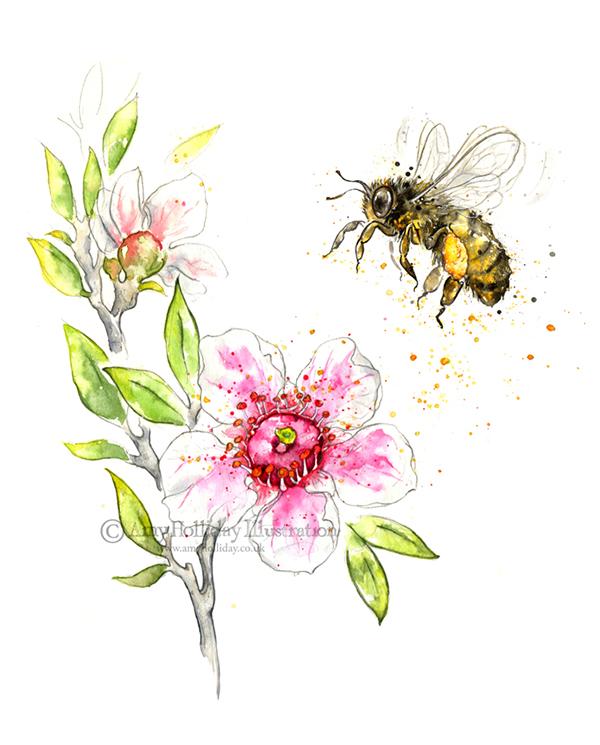 Manuka And The Honey Bee On Behance