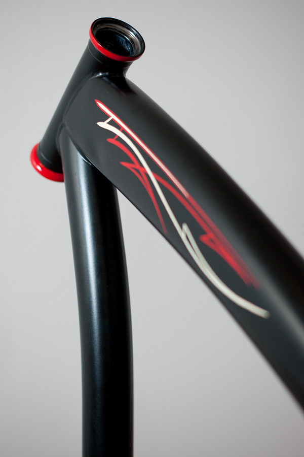 Pinstriped Bicycle On Behance