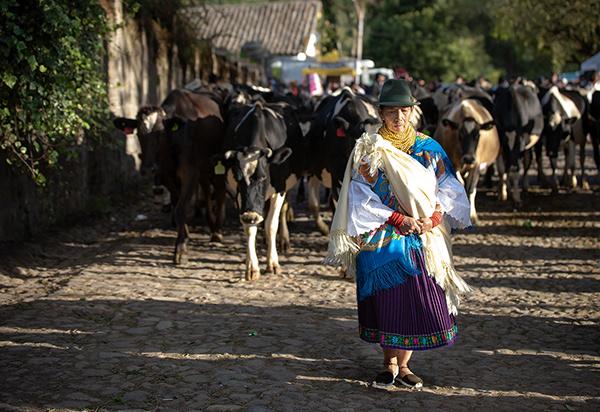 Fiestas de San Juan - Zuleta