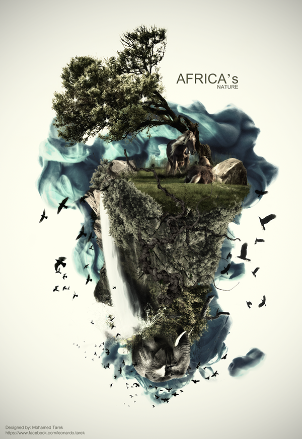 africas nature on behance