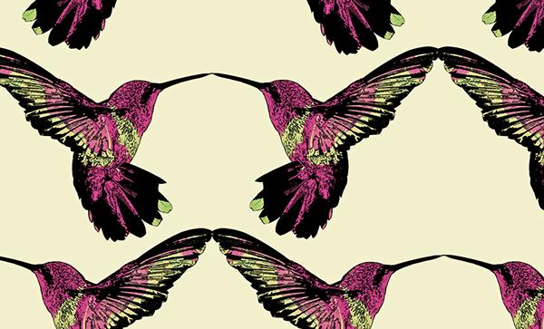 Hummingbird Pattern On Behance