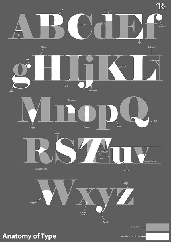 Type Anatomy 2 on Behance