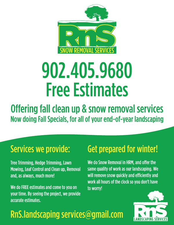 rns snow removal flyer on behance