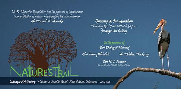 Exhibition  wildlife Wildlife photography Invitation Card