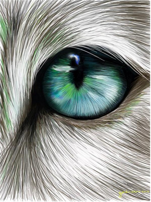 精細的24個手繪眼睛欣賞
